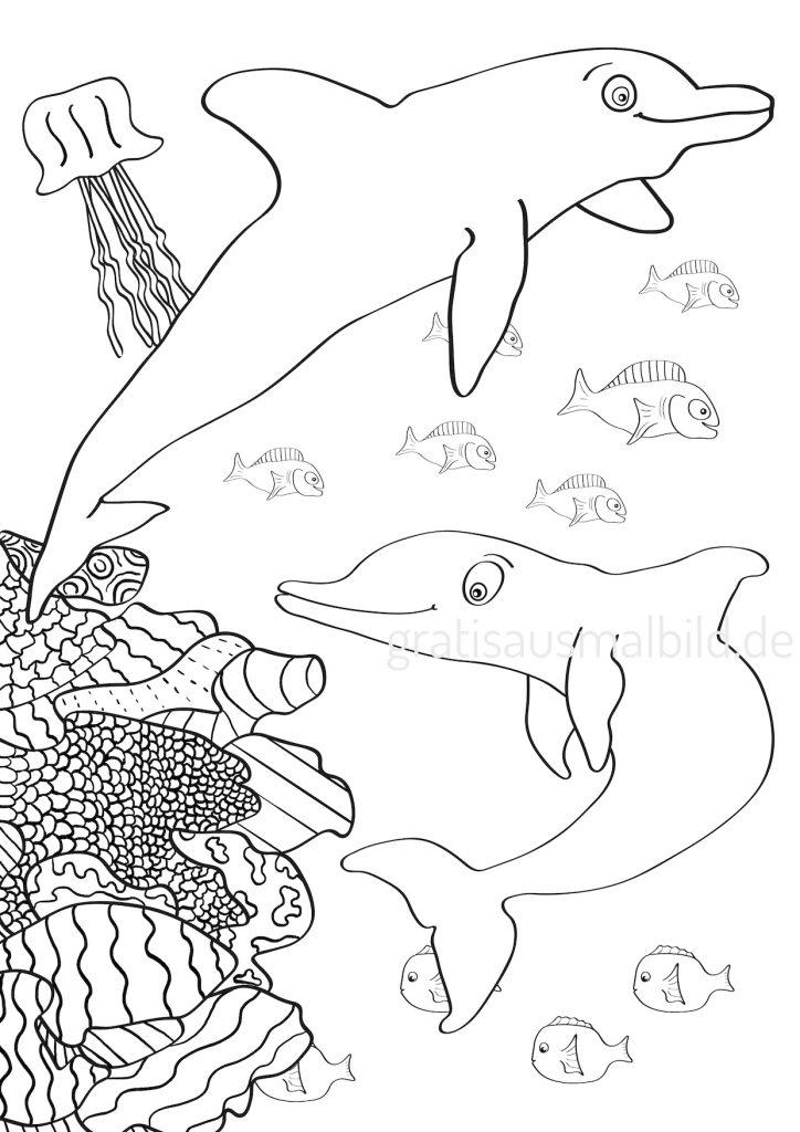 kostenlos Ausmalbilder Delphine gratis drucken malen digitale tablet laden Meer Unterwasserwelt Tier Qualle