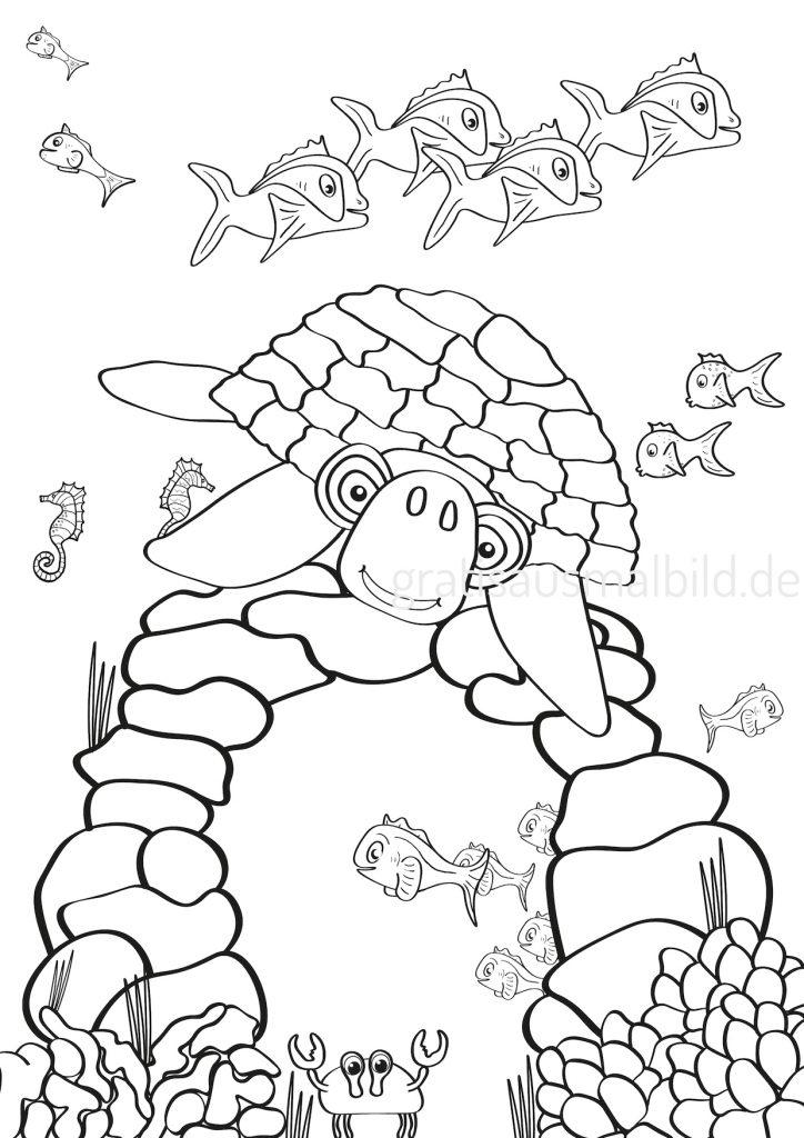 Gratis Ausmalbilder Schildkröte Seepferdchen Schildkroete Fisch Steine Unterwasserwelt Tiere gratisausmalbild.de